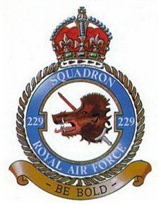 229 Squadron Badge