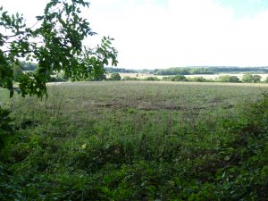 Crash Site, Church Road, Ightham, Kent